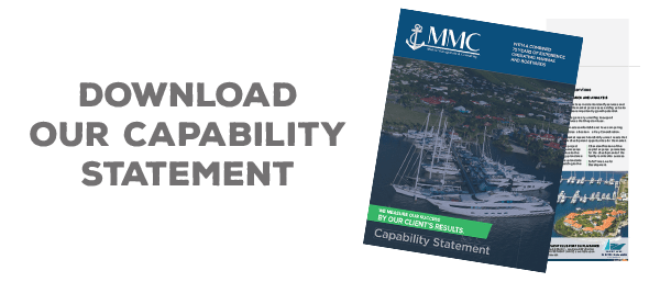 mmcnv-capability-statement-download